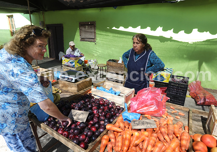 Marché aux légumes de Chanco, Chili