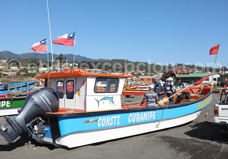 Curanipe, port de pêche