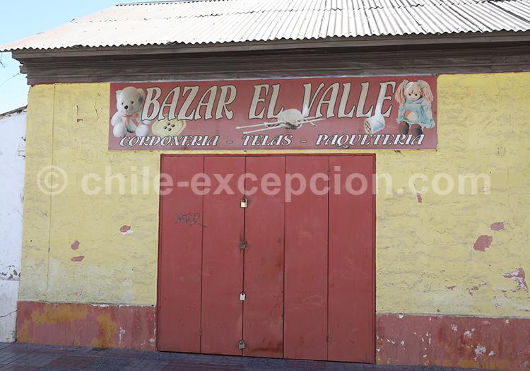 Que visiter village de Vicuña