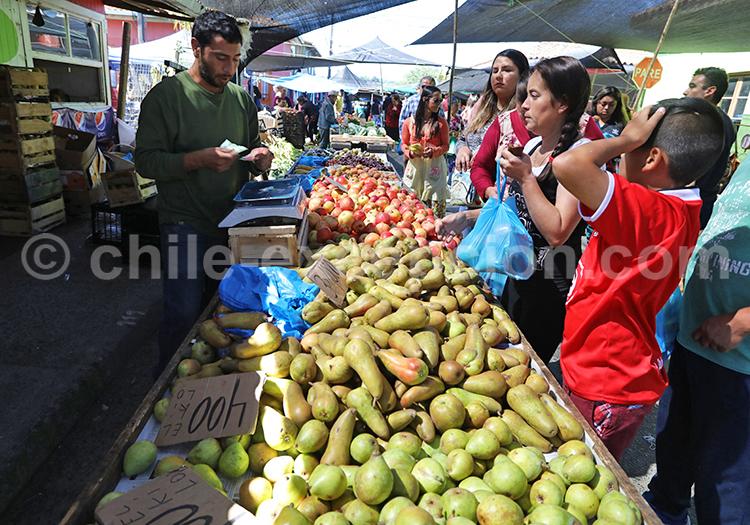 Feria de Chanco, Chili