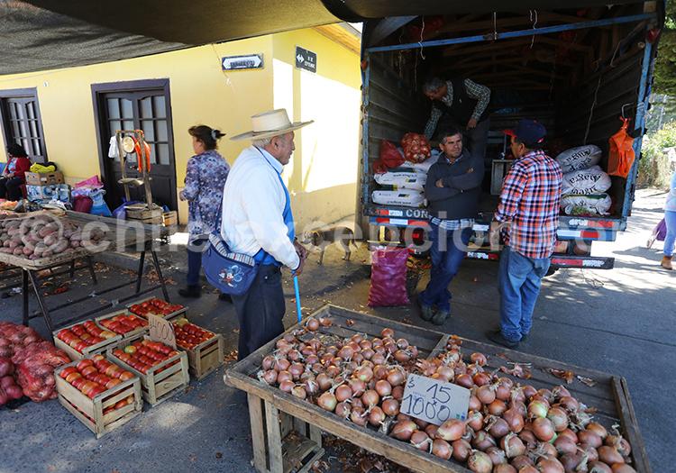 Commune de Chanco, Chili