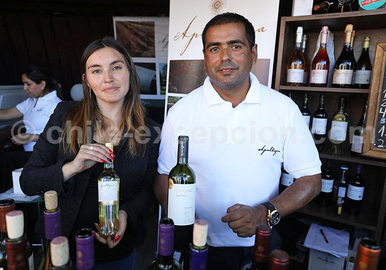 Dégustation de vins, quartiers de Santiago