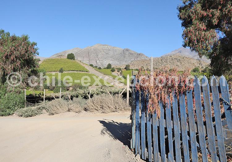 Villages de la Valle del Elqui, Chile