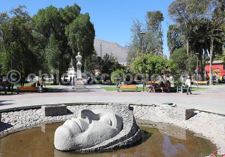Visiter le village de Vicuña, Chili