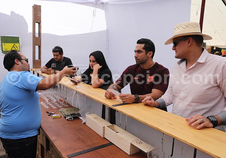 Dégustation de vin à Curico, Chili