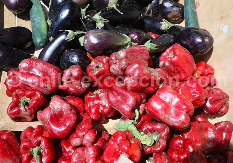Légumes du soleil, Chili