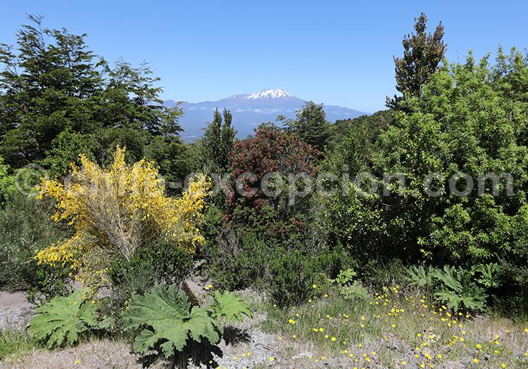 Volcan Calbuco, Chili