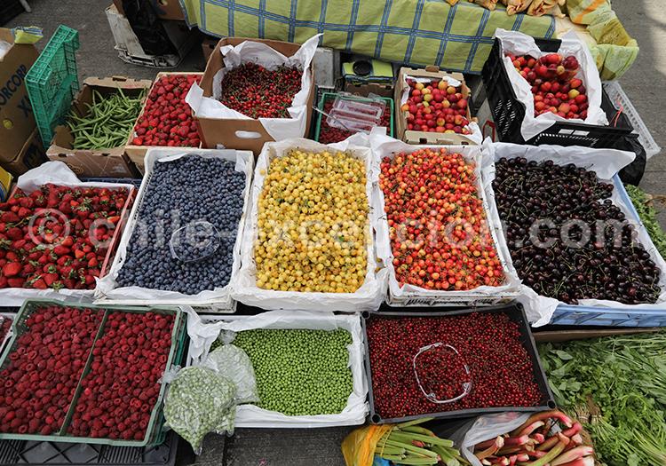 Marché traditionnel, sud du chili