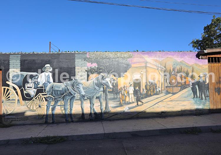 Culture chilienne, Vicuña