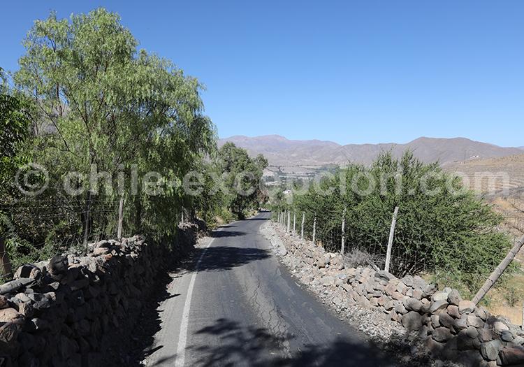 Valle del Elqui, vallée dans le désert du Chili