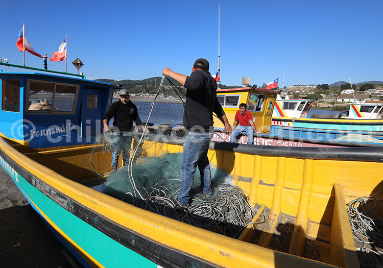 Port de Curanipe, Chili