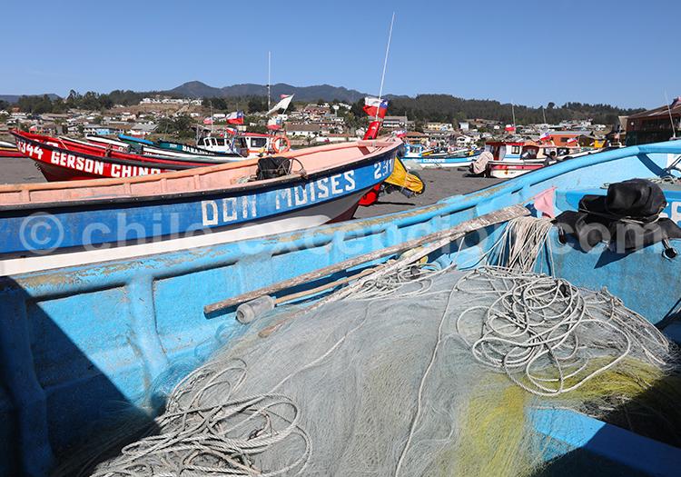 La pêche à Curanipe, Chili