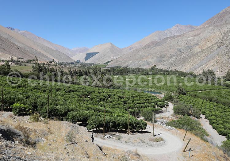 Village Pisco Elqui, Chile
