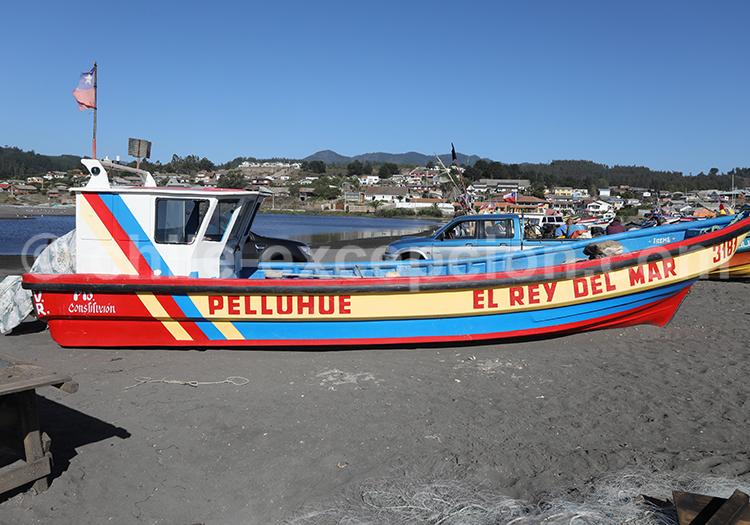 Marché aux poissons, Curinape, Chili