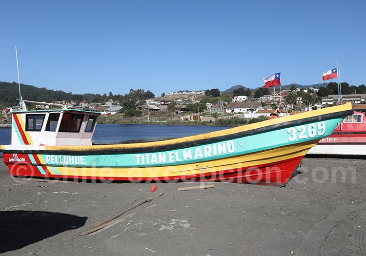 Défilé de bateaux, Curanipe, Chili