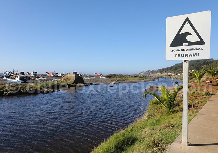 Curanipe, commune de Chanco, Chili