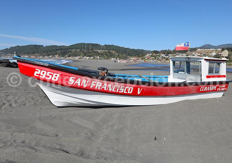 Voyage 15 jours au Chili