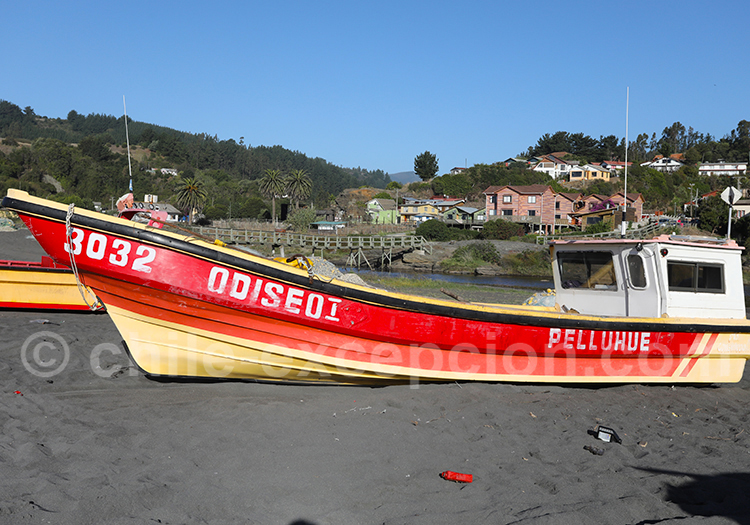 Curanipe, région del Maule, Chili
