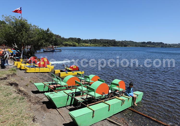 Punta Centinela, Chili