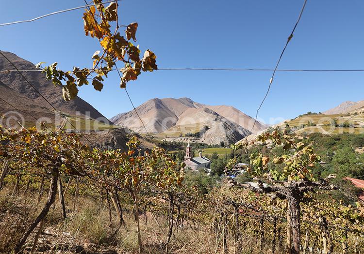 Vignes, village de Monte Grande