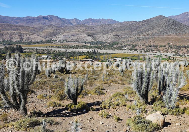 Ovalle, province de Limarí Chili