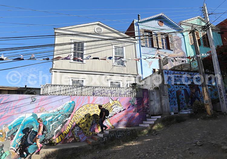 Visiter la colline Alegre, Valparaiso