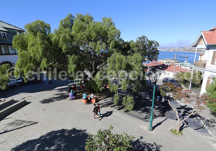 Visite guidée du Cerro Alegre, Valparaiso