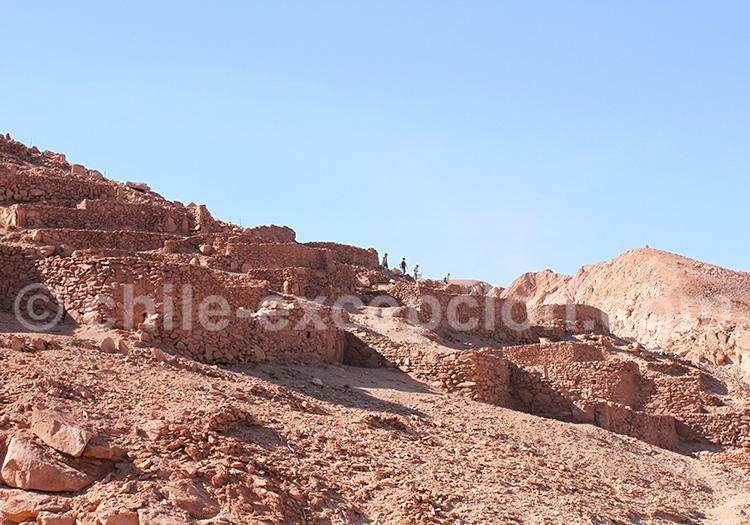 Randonnée Ruines de Quitor, San Pedro de Atacama