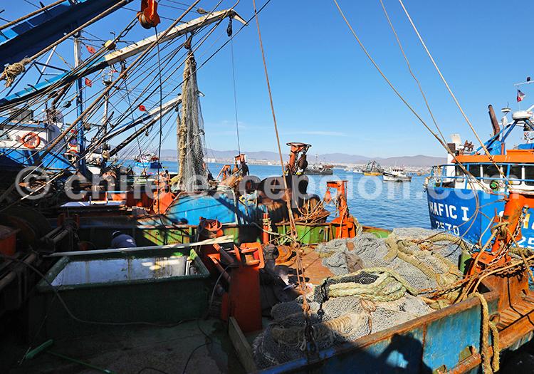 Ville portuaire, Coquimbo, Chile