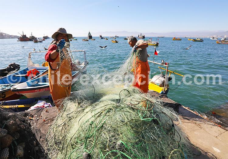 Ville de pêche, Coquimbo, Chile