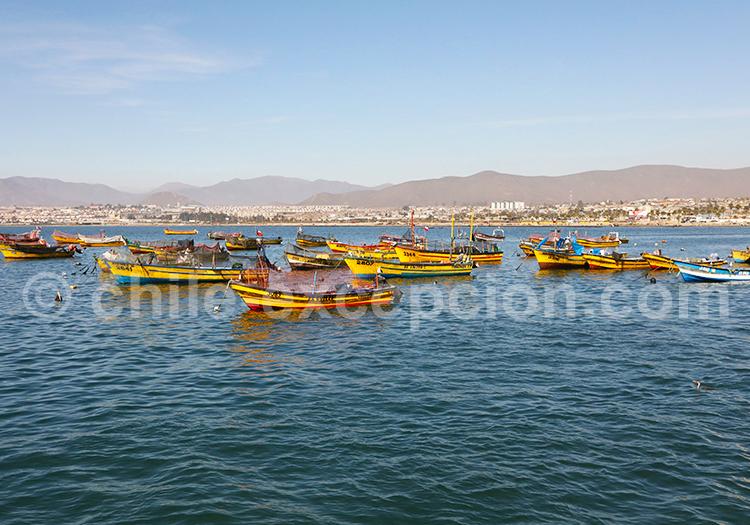 Coquimbo, ville portuaire du Chile