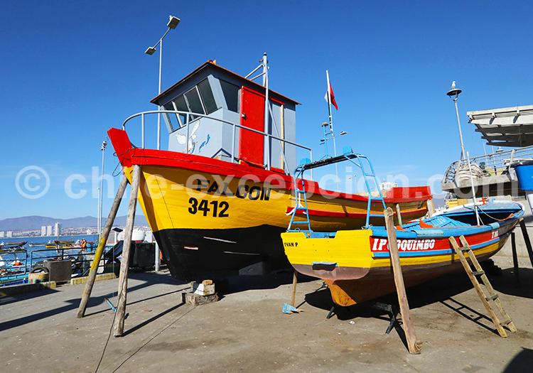 Bateau de Pêche, Coquimbo, Chile