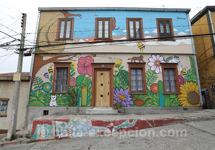 Maison colorée au Cerro Concepcion, Valpo