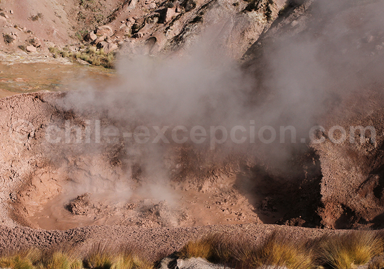 Fumerolles, San Pedro de Atacama