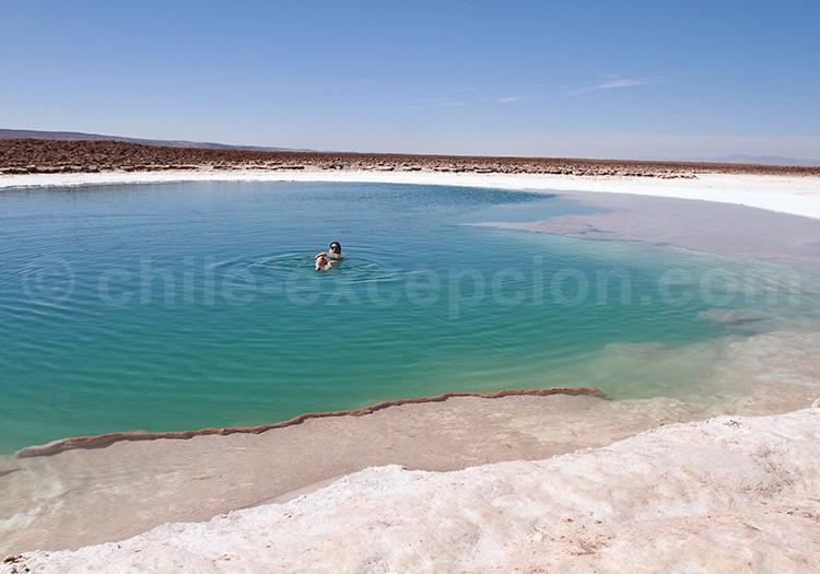 Activités près de San Pedro de Atacama