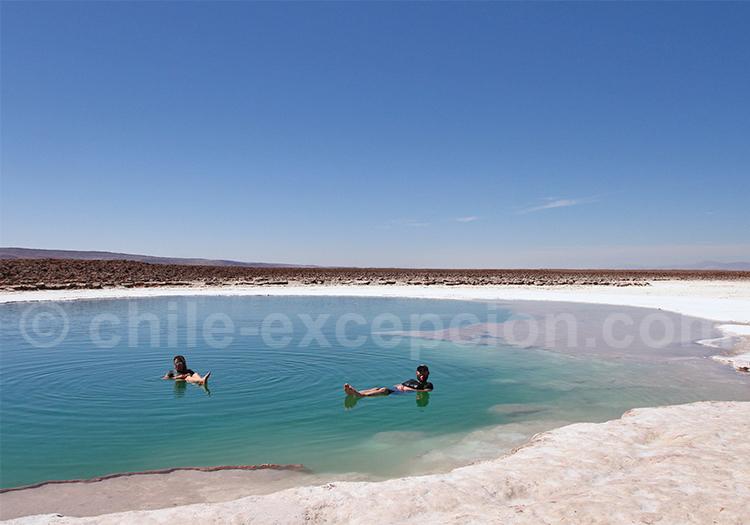 Tour près de San Pedro de Atacama