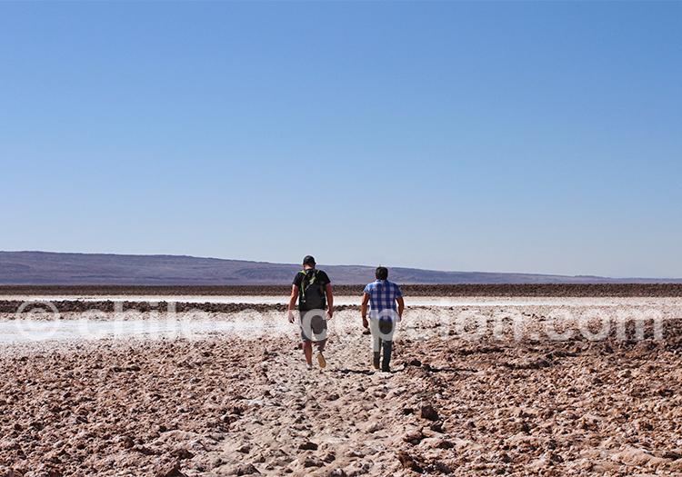 Lagunas Escondidas, alentours de San Pedro de Atacama