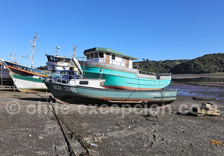 Visite de l'île de Chiloé, Chili