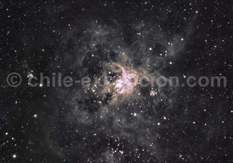 Tarantula, Observatoire Daniel Verschatse