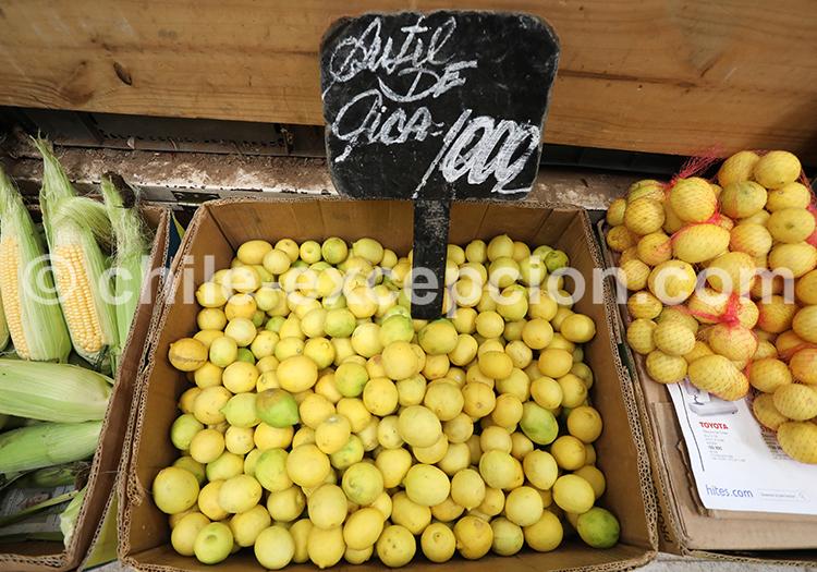 Limones de Limari, Chile