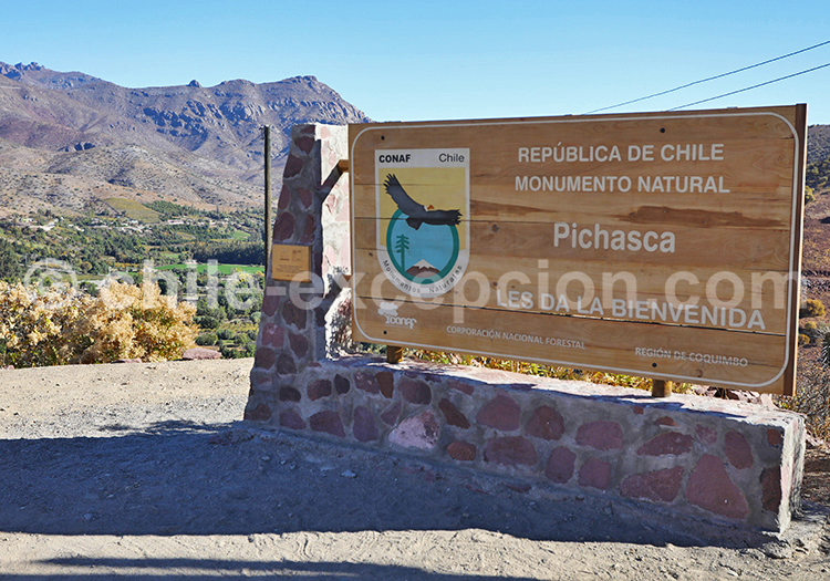 Site archéologique, Pichasca, Ovalle