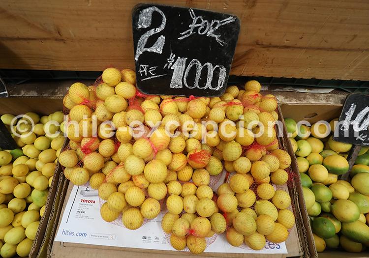 Limones, Feria Modelo de Ovalle, Chili