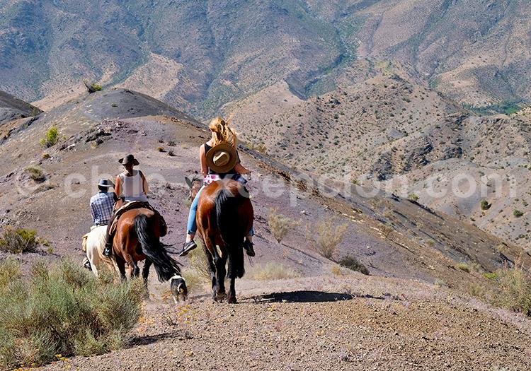 Excursion à cheval, Hacienda los Andes, Ovalle