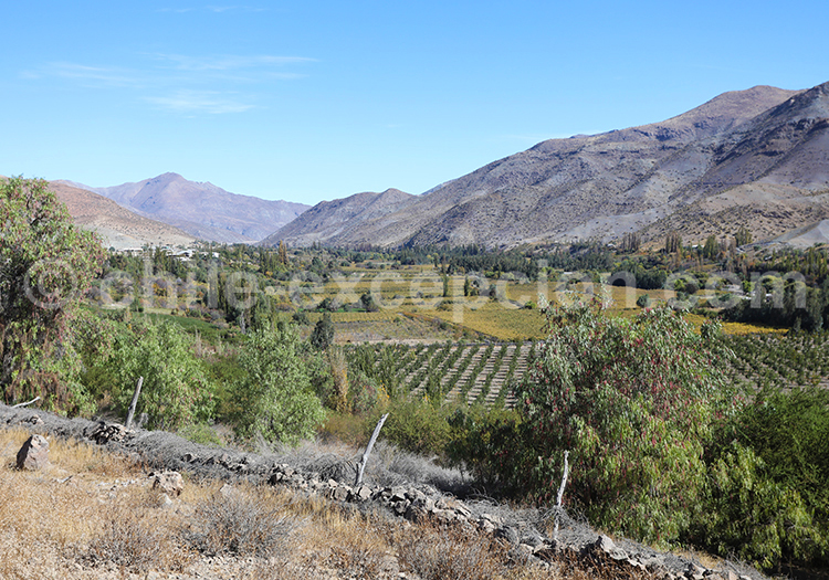 Voyage à Ovalle, Chili