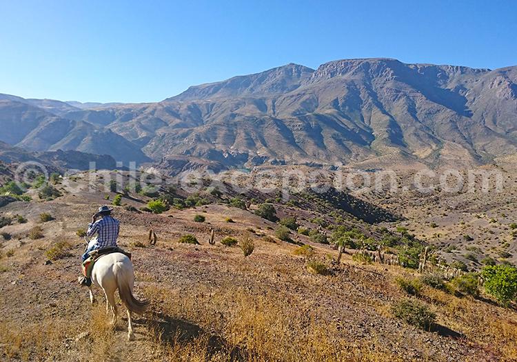 Balade à cheval, Hacienda los Andes, Ovalle