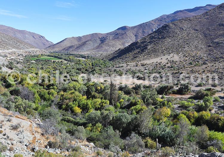 Site archéologique de la vallée Rio Hurtado, Ovalle