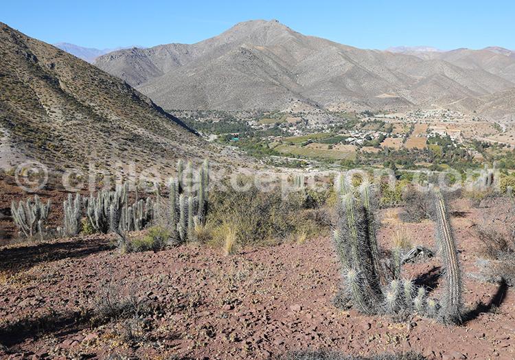Archéologie, Monument Naturel Pichasca