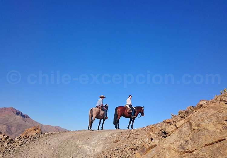 Randonnée à cheval, Ovalle