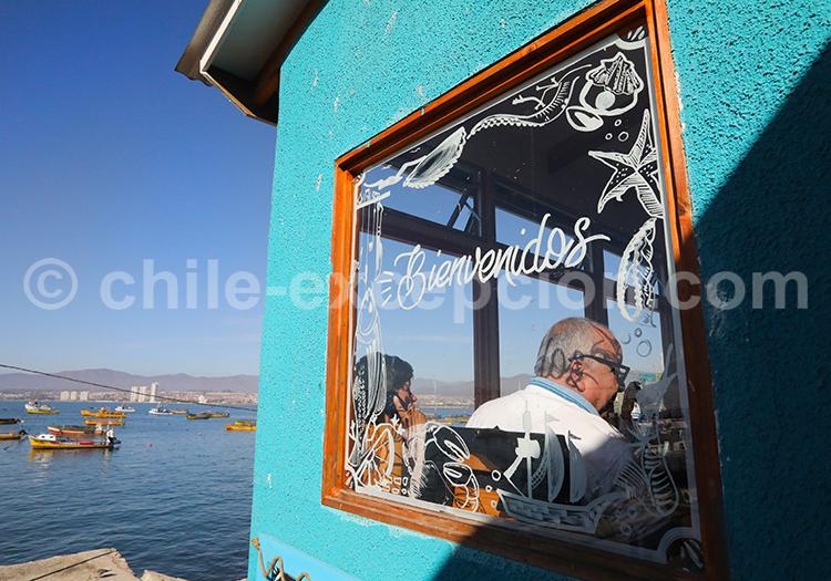 Agence de voyage locale au Chili, Coquimbo