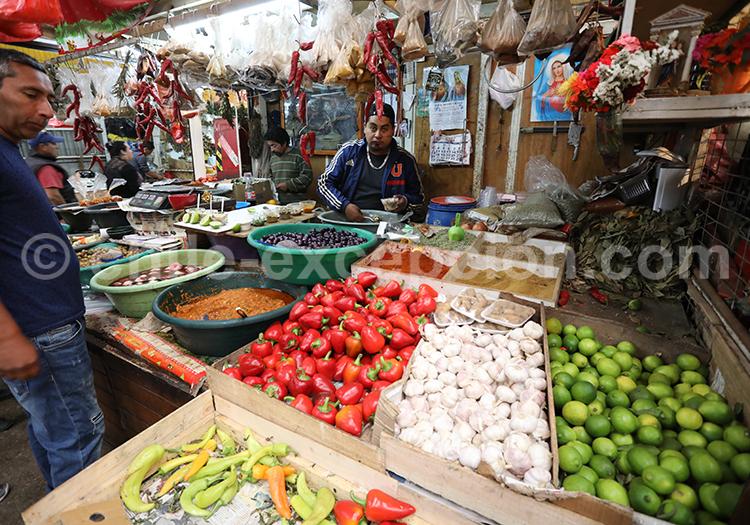 Feria Modelo de Ovalle, marchés du Chili